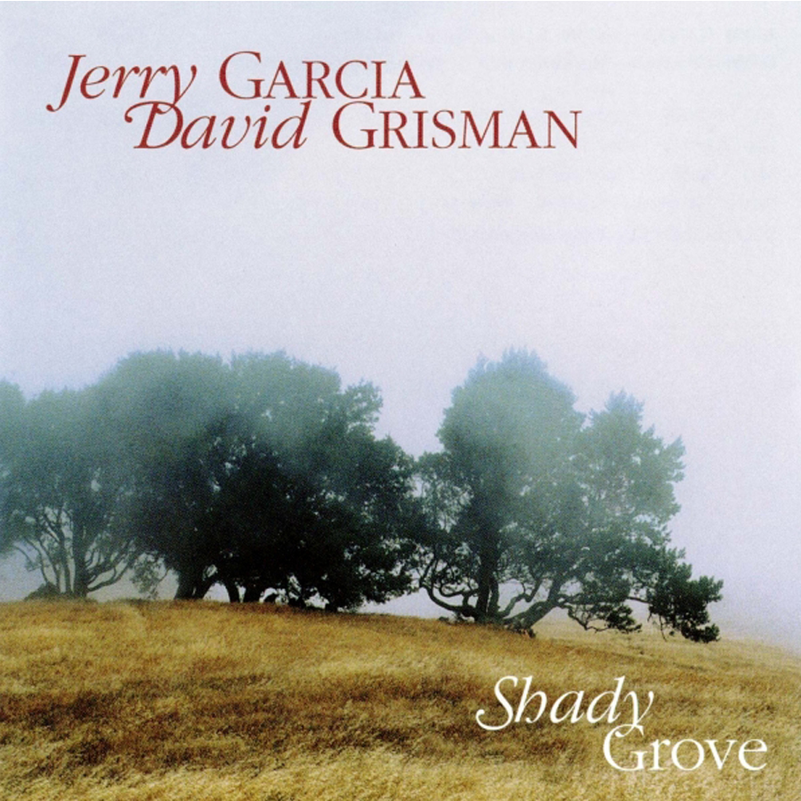 ordinary shady grove #7: Jerry Garcia
